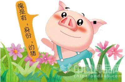 上海推广生猪电子耳标 今后猪肉将可追溯