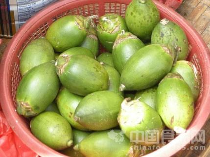 湖南将修订食用槟榔地方标准