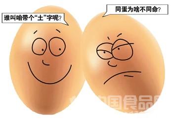 """""""概念蛋""""都是炒作 商家爱怎么叫怎么叫"""