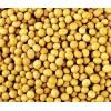 大量收购玉米、高粱、棉粕、油糠、酒糟粉